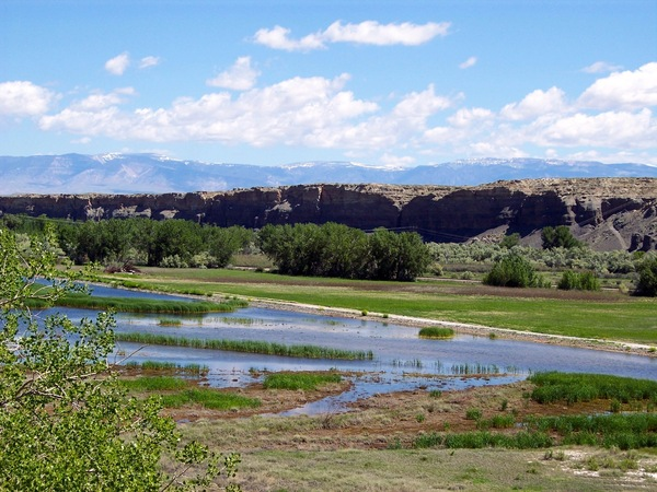 Bighorn & Greybull River Sporting Retreat