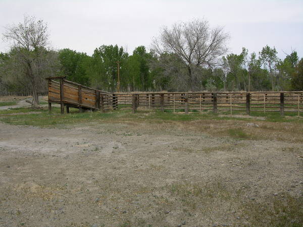 Greybull River Property