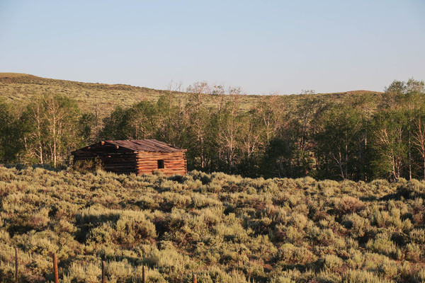 Badger Creek Homestead Ranch